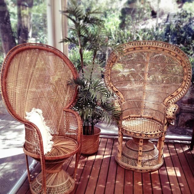 peacock chair sydney 2